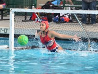 Sports_WaterPolo